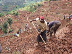 soil-erosion-project-rwanda-5895b7655f9b5874eee2243c